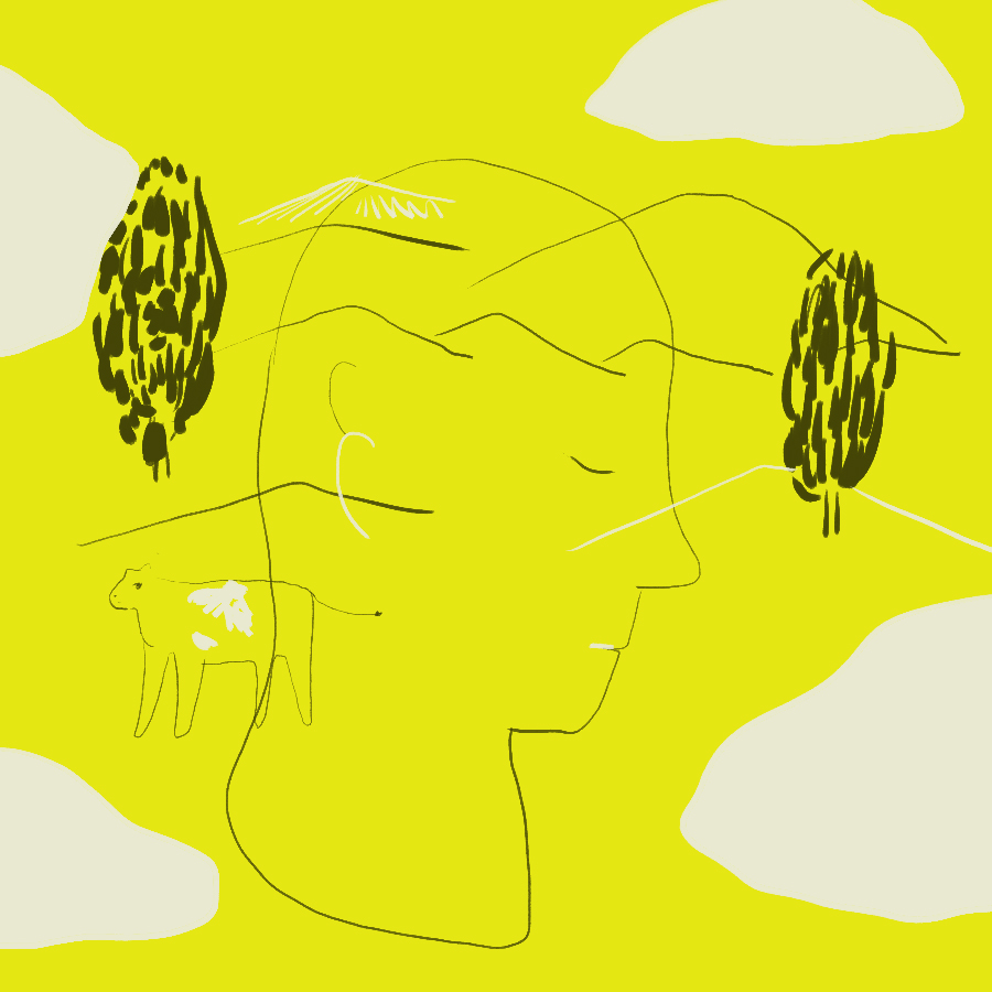 abstract illustration of a human head in profile set against a south African backdrop