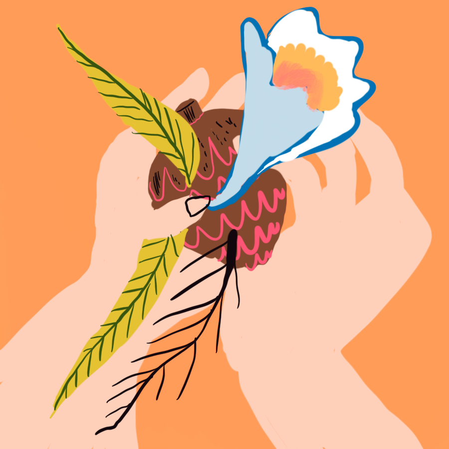 Illustration of a hand holding a conifer cone, leaves, and a twig
