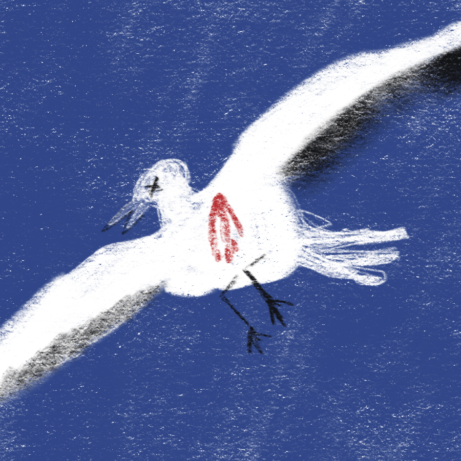 Symblic Illustration of a seagull in flight with blood on its chest