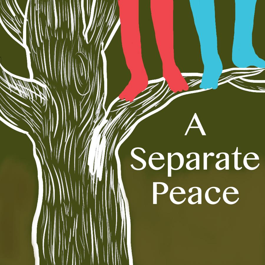 A Separate Peace book cover