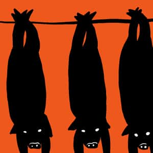 Illustration of the silhouesttes of three pigs hanging upside down