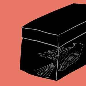 illustration of a dead bird lying within a black box