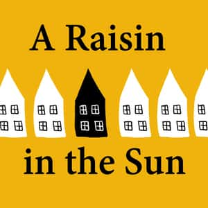A Raisin In The Sun Critical Essays  Enotescom