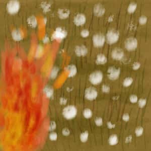 illustration of a fire spreading through a field