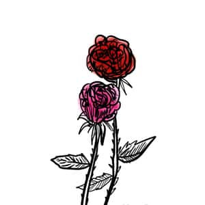 illustration of two roses slighly intertwined with one another