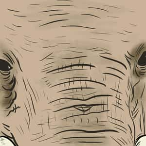 close-up illustration of an elephant's face