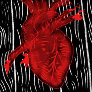 illustration of a human heart lying on black floorboards