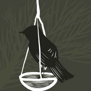 Illustration of a bird perched on a scale of justice