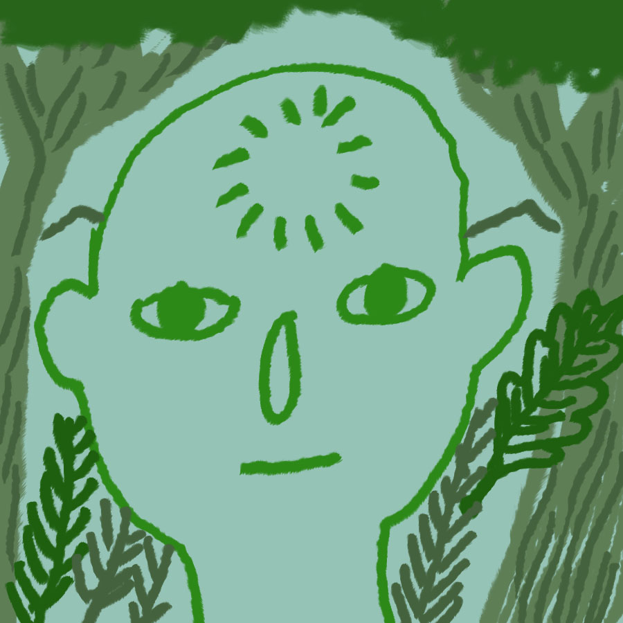 human face looking straight on surrounded by trees and woodland