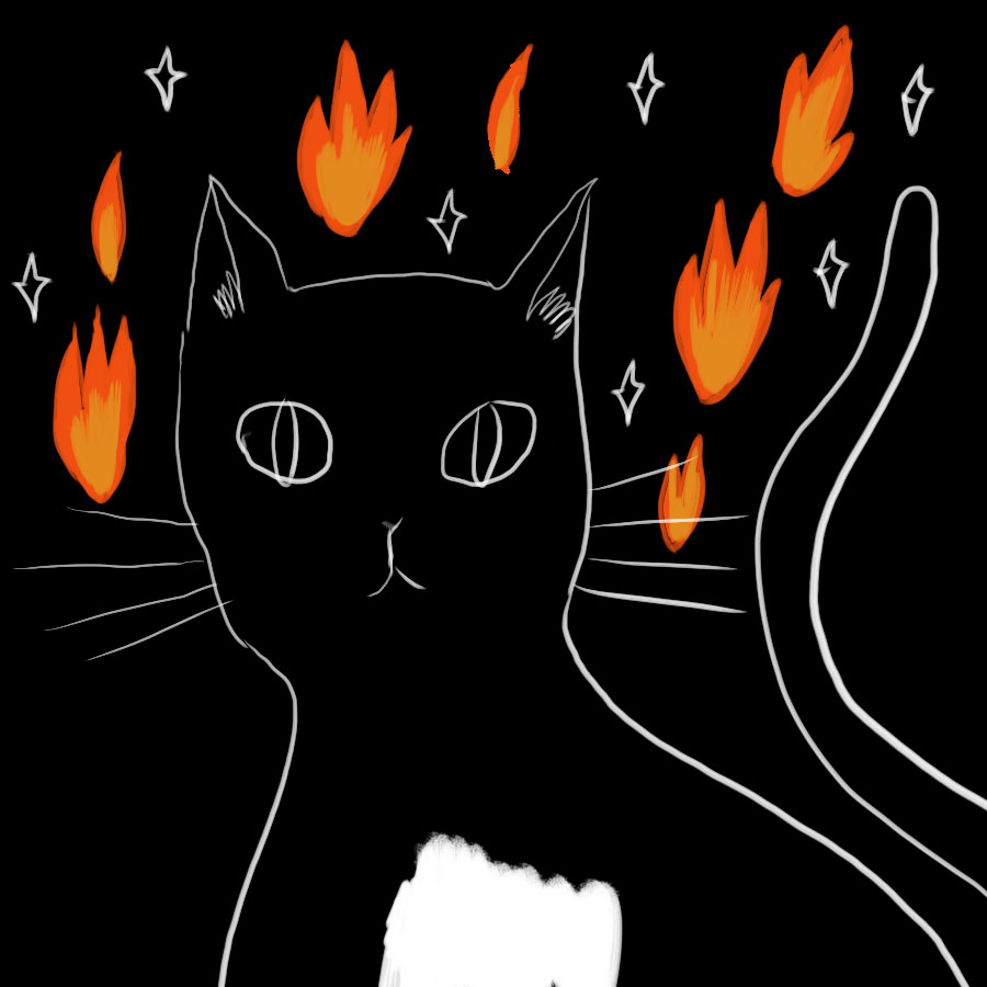 illustration of a black cat with a white chest staring ahead and surrounded by fire