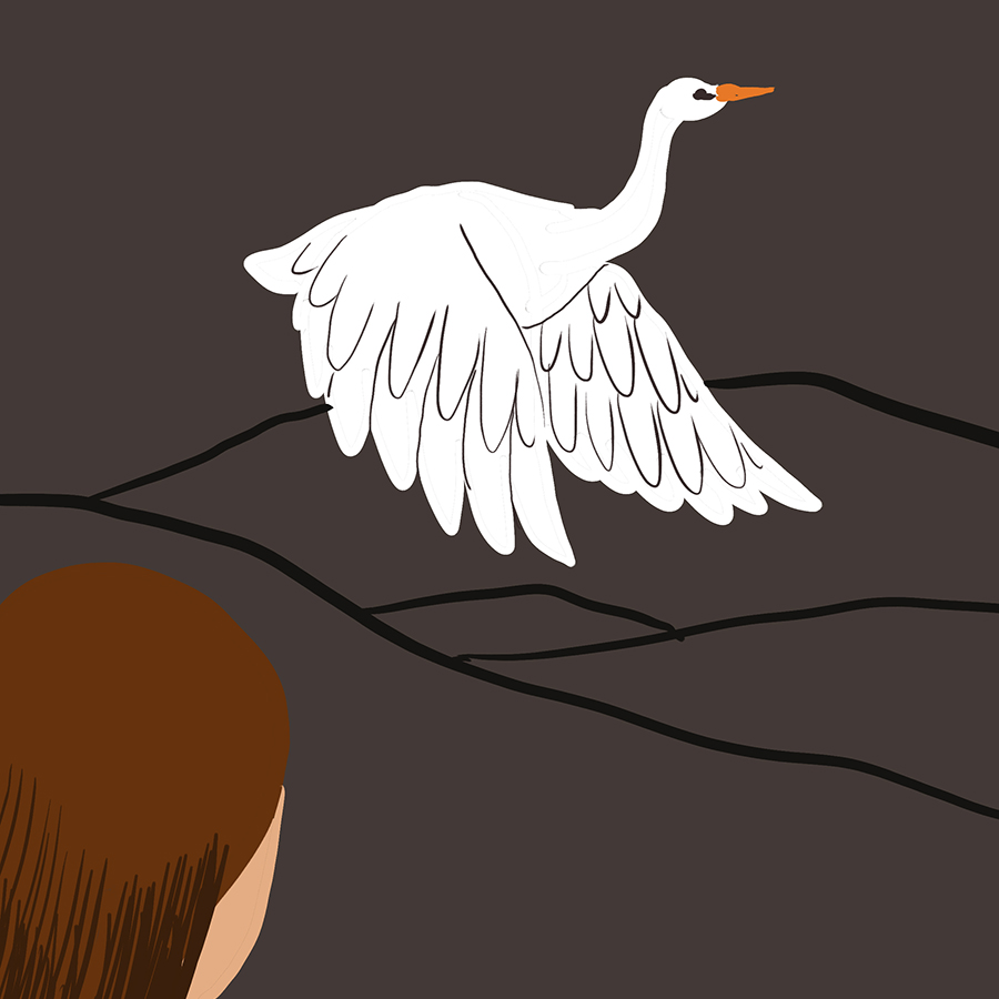illustration of main character Sylvia watching a white heron fly through the sky